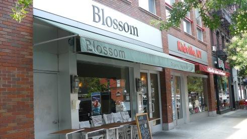 blossom01