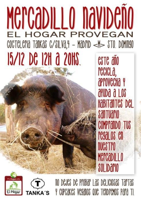 Mercadillos solidarios: El Hogar Provegan